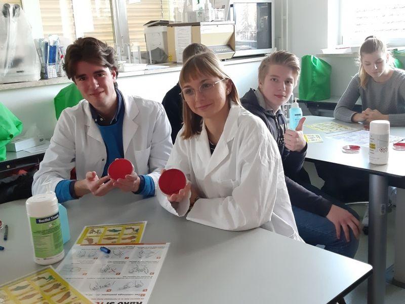 Bild 2: Die Schüler beim Experimentieren, ©Anja Valentinitsch-Harrich