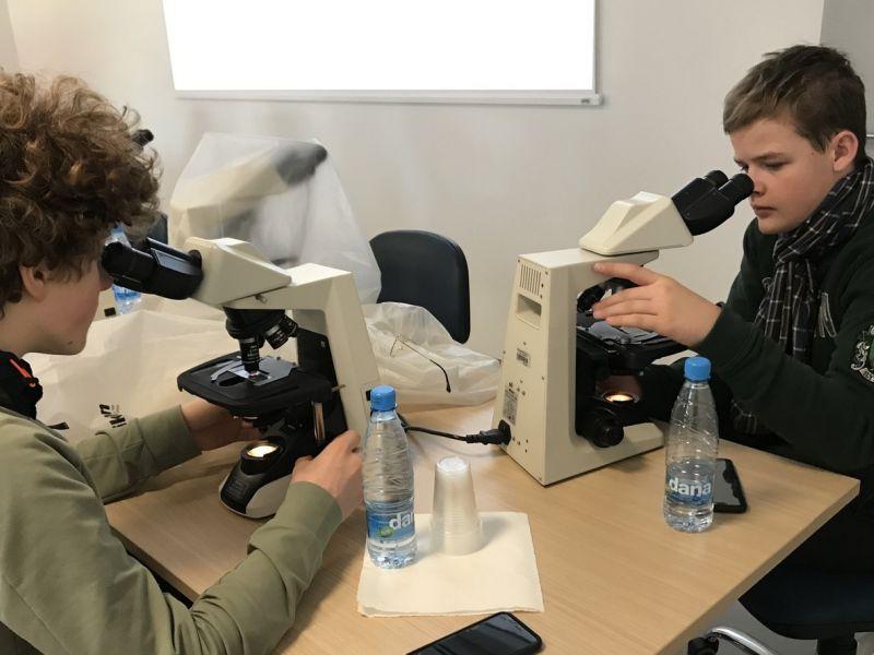 Bild 4: Die Schüler beim Mikroskopieren, ©Tadeja Vinko-Smrtnik