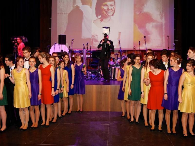 Slika 1: Poloneza v barvah - foto: Krivograd
