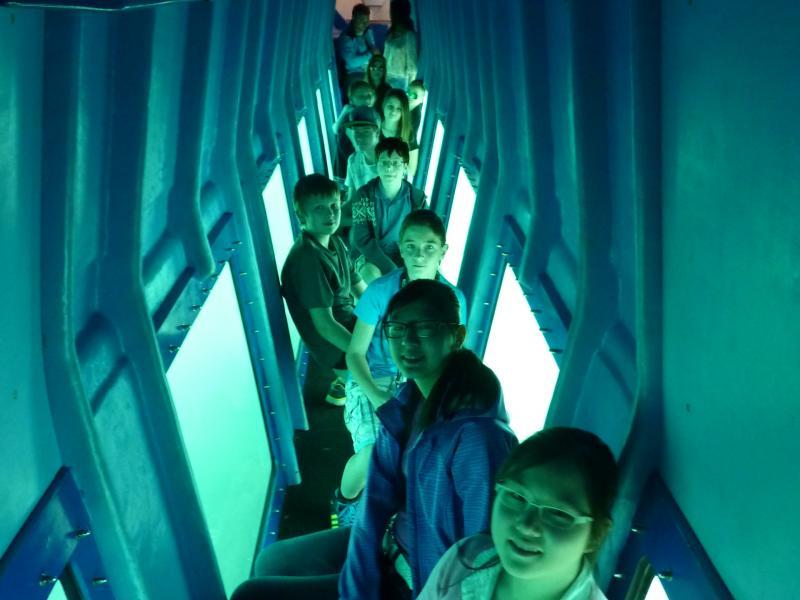 Slika 1: V podpalublju ladje Subaquatic