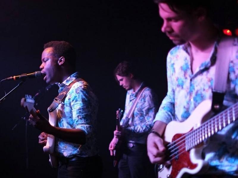 Slika 2: Nastop banda At Pavillon, © Kontaktna leča